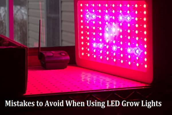 Common Mistakes to Avoid When Using LED Grow Lights